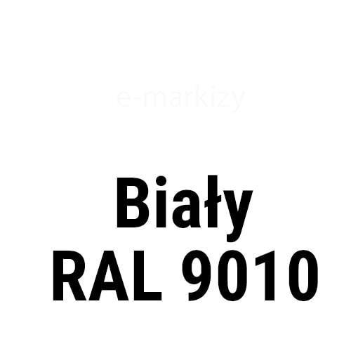 Biały RAL9010