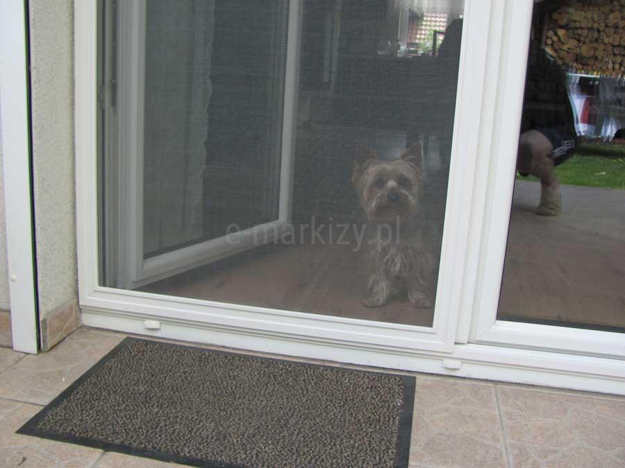 Moskitiera przesuwna slim, wąska prowadnica, moskitiera na duże okno, moskitiera na drzwi tarasowe