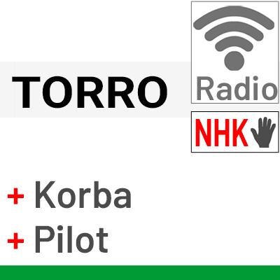 Silnik Torro z awaryjnym otwieraniem, wb. centralką i pilotem bezprzewodowym