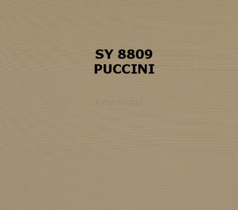 SY-8809